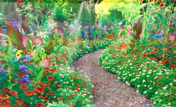 Garden path and flowers Scene 1 3m x 6m Backdrop