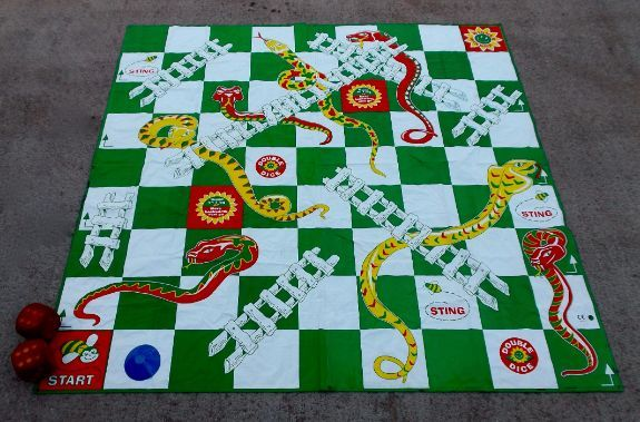 Giant Snakes and Ladders