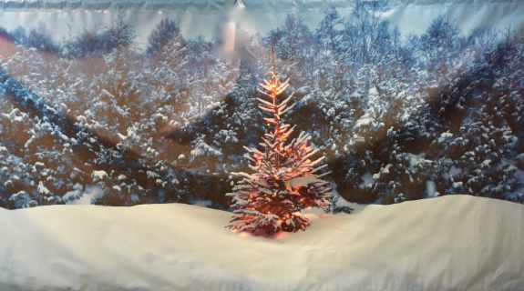 Winter Wonderland Backdrop
